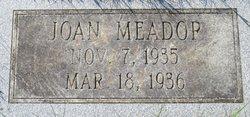 Joan Meador