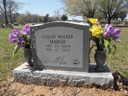 Collin Walker Marsh