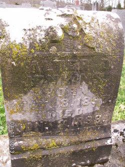 David Walter Walter Jenkins