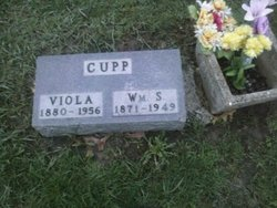 Viola <i>Washam</i> Cupp
