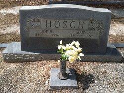 Joseph William Joe Hosch