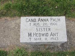 Sr M. Hedwig Ant