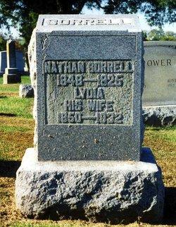 Lydia Lettie <i>Bromagen</i> Sorrell