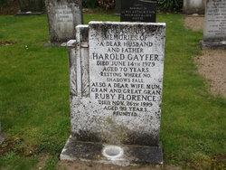 Harold Gayfer