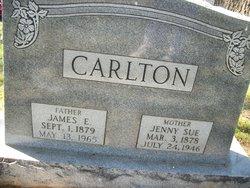 James Ellis Carlton