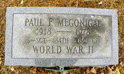 Paul Fox Megonigal