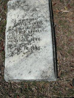 George Samuel Anderson