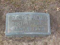 Delbert Palmer