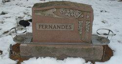 Francisco Soares Fernandes