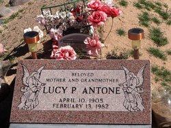 Lucy P Antone