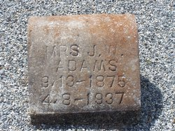 Mattie Ola (Mrs. J.W.) <i>Longino</i> Adams