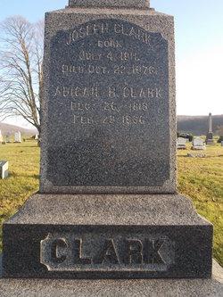 Abigail <i>Hitchcock</i> Clark