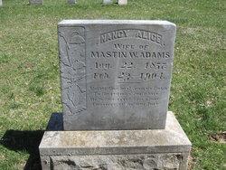 Nancy Alice <i>Lewis</i> Adams