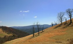 Samuel Botkin Family on Bullpasture Mountain