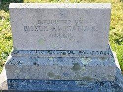 Helen Howland Allen