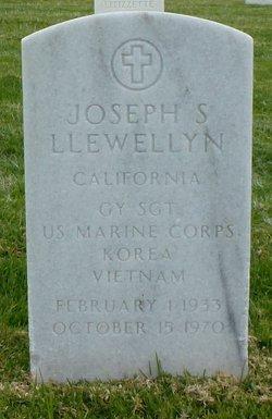 Joseph S Llewellyn