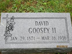 David Butler Goosey, II