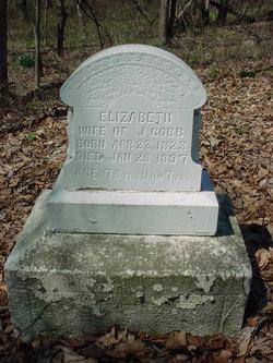 Elizabeth Jane Cobb