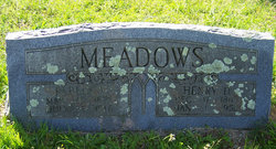 Henry David Meadows