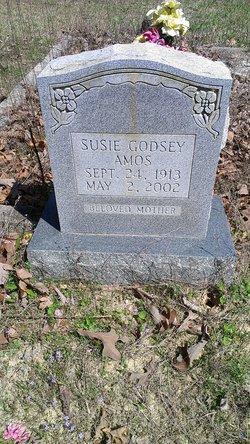 Susie Jane <i>Godsey</i> Amos