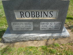 David G. Robbins