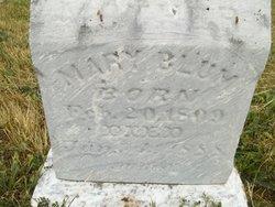 Mary Blum