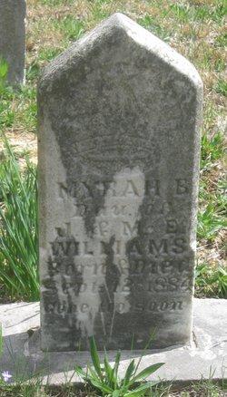Myra E Williams
