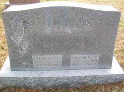 Nora O. <i>Moyer</i> Amick