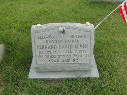 Bernard David Levin
