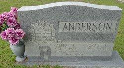Albert E Anderson