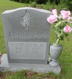 Albert Ervin Anderson, Jr
