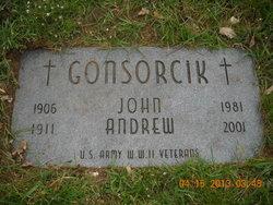 Andrew W. Gonsorcik