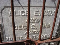 Alice E <i>Huelsnitz</i> Cox