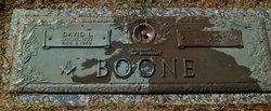 Dave Layfayette Boone