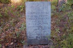 Benjamin Moses Bradley