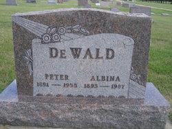 Peter DeWald