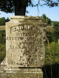 Sarah A <i>Davis</i> McIlroy