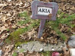 Baby Akia