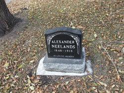 Alexander Neelands