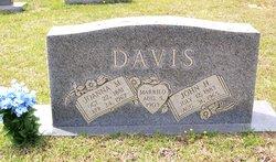 Sarah Joanna <i>McKinney</i> Davis