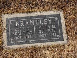 Viola M <i>Stevens</i> Brantley