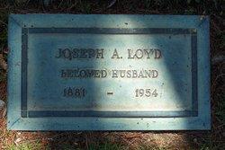 Joseph Alexander Loyd