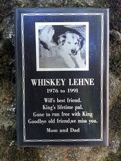 Whiskey Lehne
