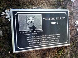 Caamora Rhyl of Gower Rhylie Billie