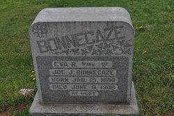 Eva R Bonnecaze