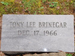 Tony Lee Brinegar