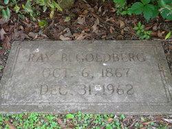Ray B. Goldberg