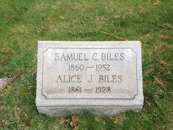 Alice J Biles