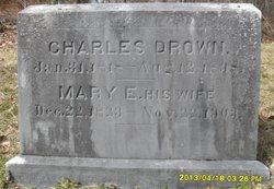 Mary E. <i>Webber</i> Drown