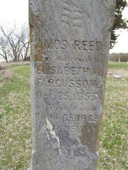 Amos Reed